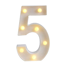 '5' Led Light