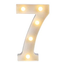 '7' Led Light